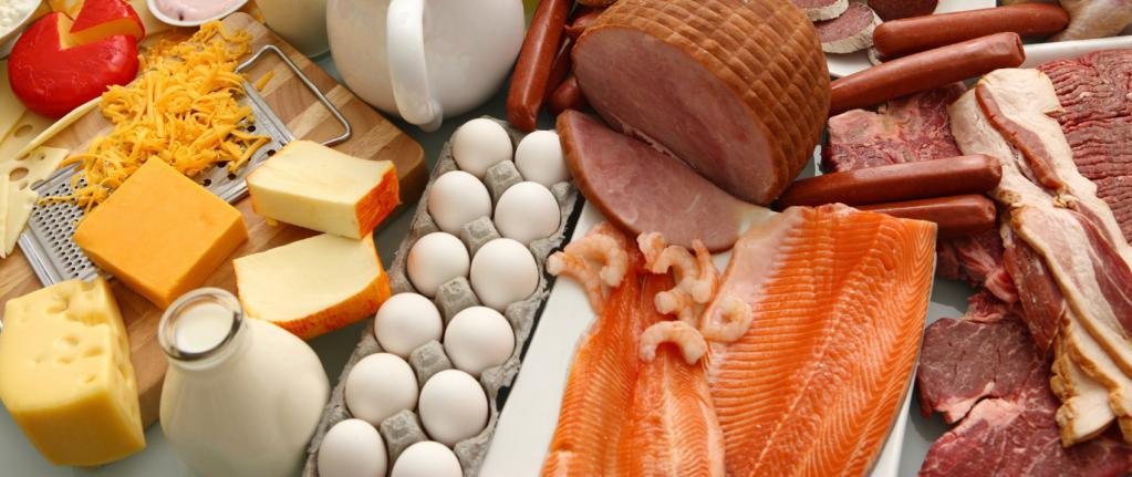Отзывы о белковой диете для похудения — результаты, эффективность
